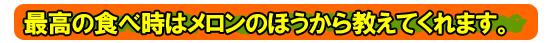 カネダイのお中元-夕張メロン